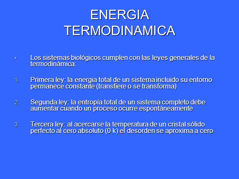 ENERGIA TERMODINAMICA Los sistemas biológicos cumplen con las leyes generales de la termodinámica: Los sistemas biológicos cumplen con las leyes gener