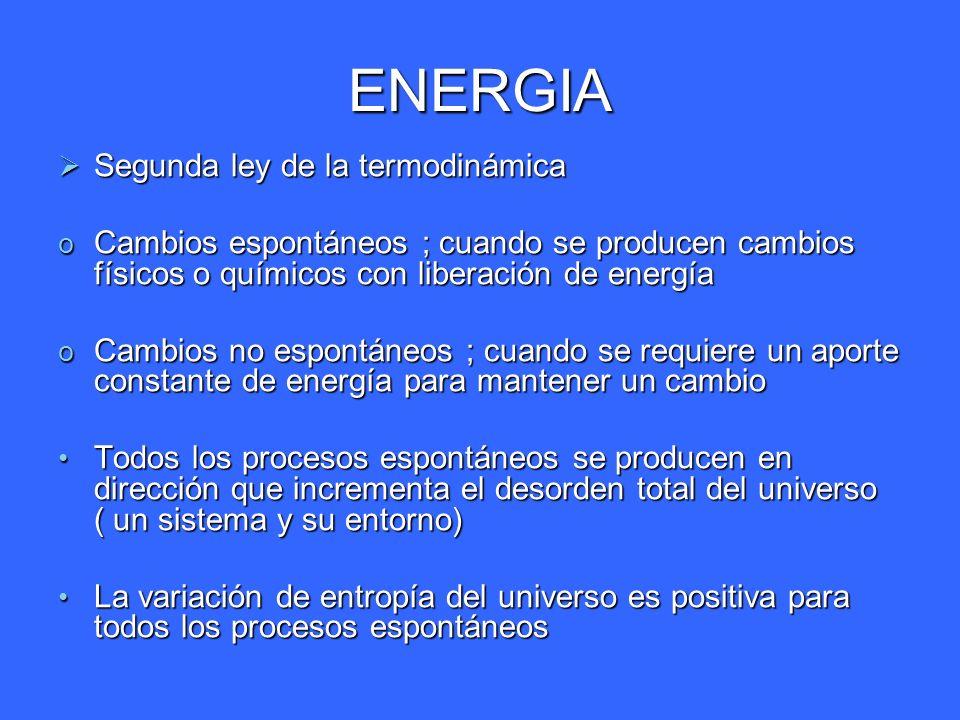 ENERGIA REACCIONES ACOPLADAS Los procesos endorgonicos proceden mediante el acoplamiento con procesos exorgonicos Los procesos endorgonicos proceden mediante el acoplamiento con procesos exorgonicos En la practica un proceso endorgonico no puede existir independientemente si no que debe constituir un componente de un sistema exorgonico-- endorgonico En la practica un proceso endorgonico no puede existir independientemente si no que debe constituir un componente de un sistema exorgonico-- endorgonico El cambio total es exorgonico El cambio total es exorgonico