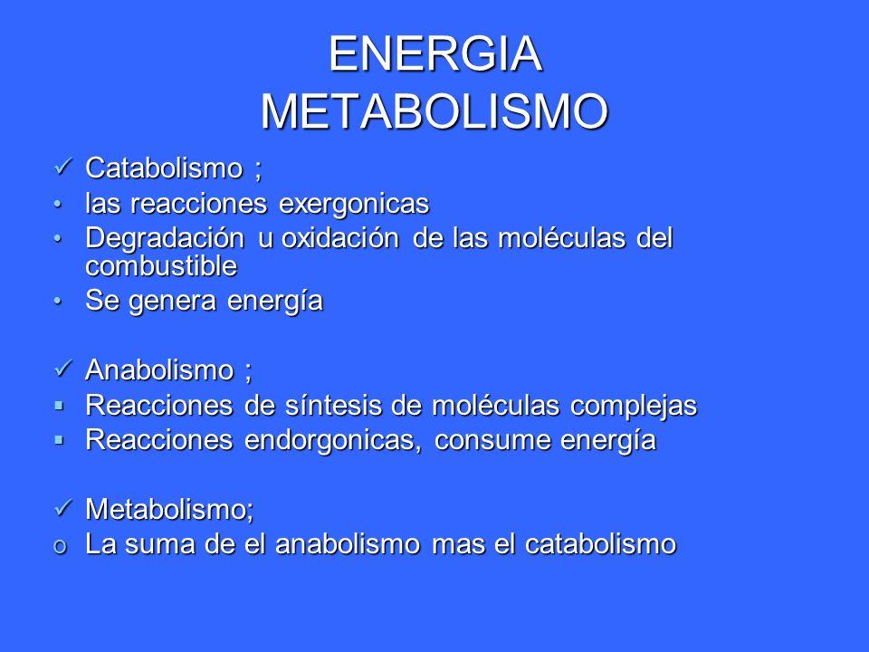 ENERGIA REACCIONES ACOPLADAS A.