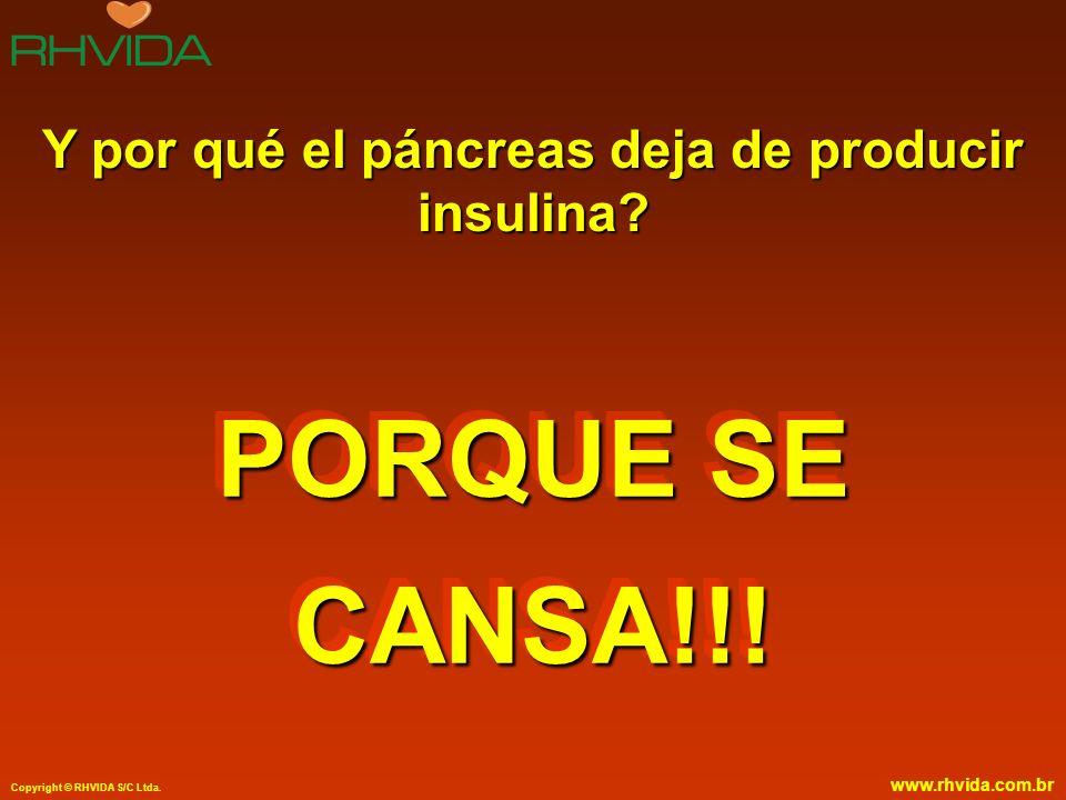 Copyright © RHVIDA S/C Ltda. www.rhvida.com.br Y por qué el páncreas deja de producir insulina? PORQUE SE CANSA!!!