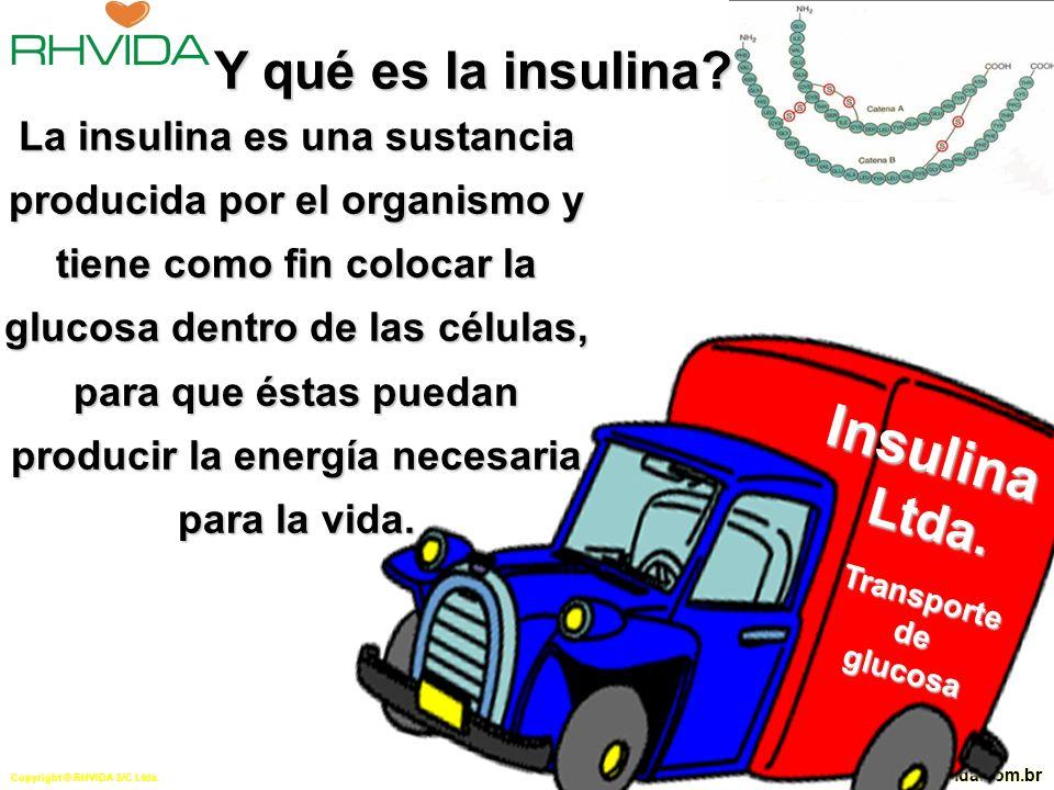 Copyright © RHVIDA S/C Ltda.www.rhvida.com.br Y qué es la diabetes.