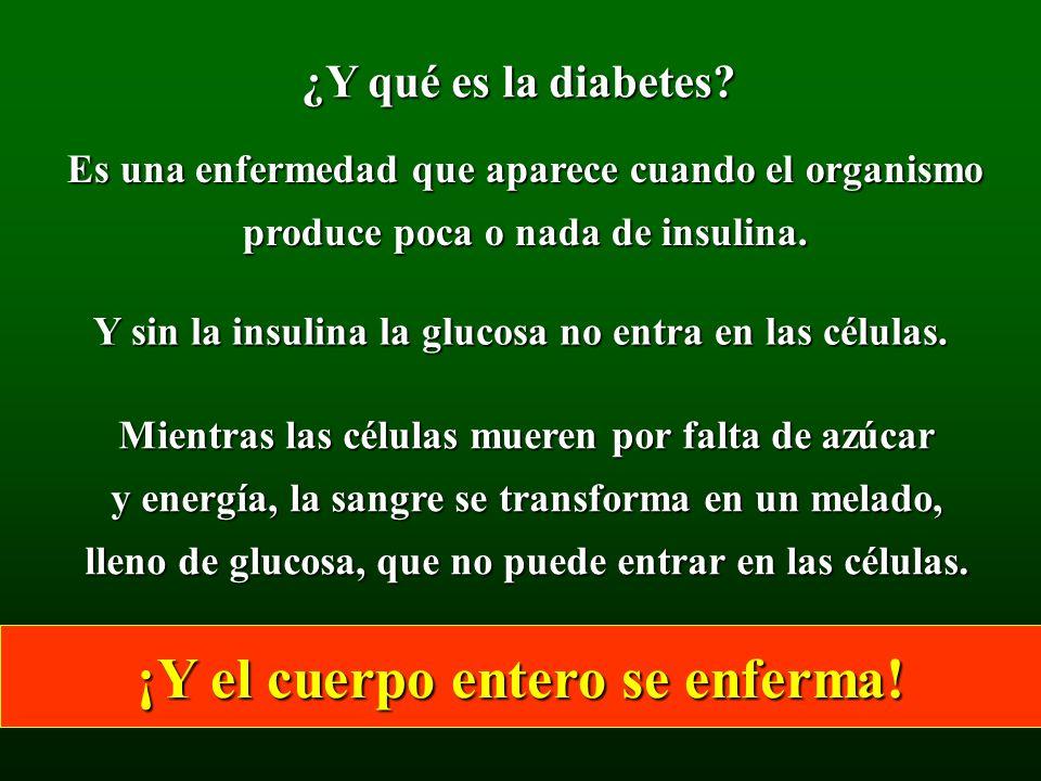 ¿Y qué es la diabetes? Es una enfermedad que aparece cuando el organismo produce poca o nada de insulina. Y sin la insulina la glucosa no entra en las