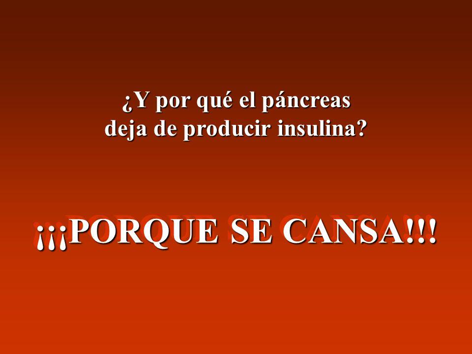 ¿Y por qué el páncreas deja de producir insulina? ¡¡¡PORQUE SE CANSA!!!