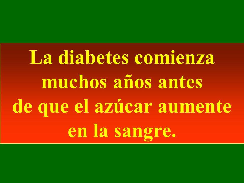 La diabetes comienza muchos años antes de que el azúcar aumente en la sangre.