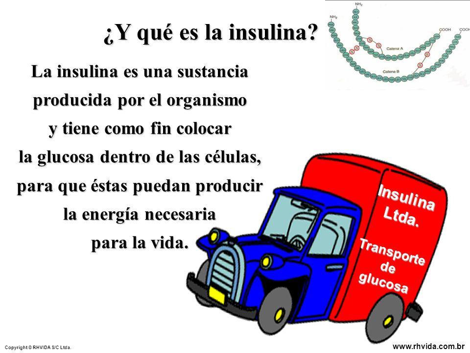La insulina es una sustancia producida por el organismo y tiene como fin colocar la glucosa dentro de las células, para que éstas puedan producir la e