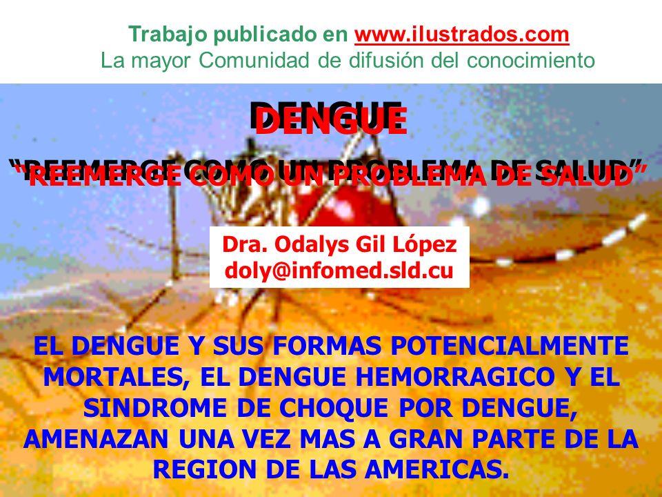 DENGUE REEMERGE COMO UN PROBLEMA DE SALUD DENGUE REEMERGE COMO UN PROBLEMA DE SALUD EL DENGUE Y SUS FORMAS POTENCIALMENTE MORTALES, EL DENGUE HEMORRAG