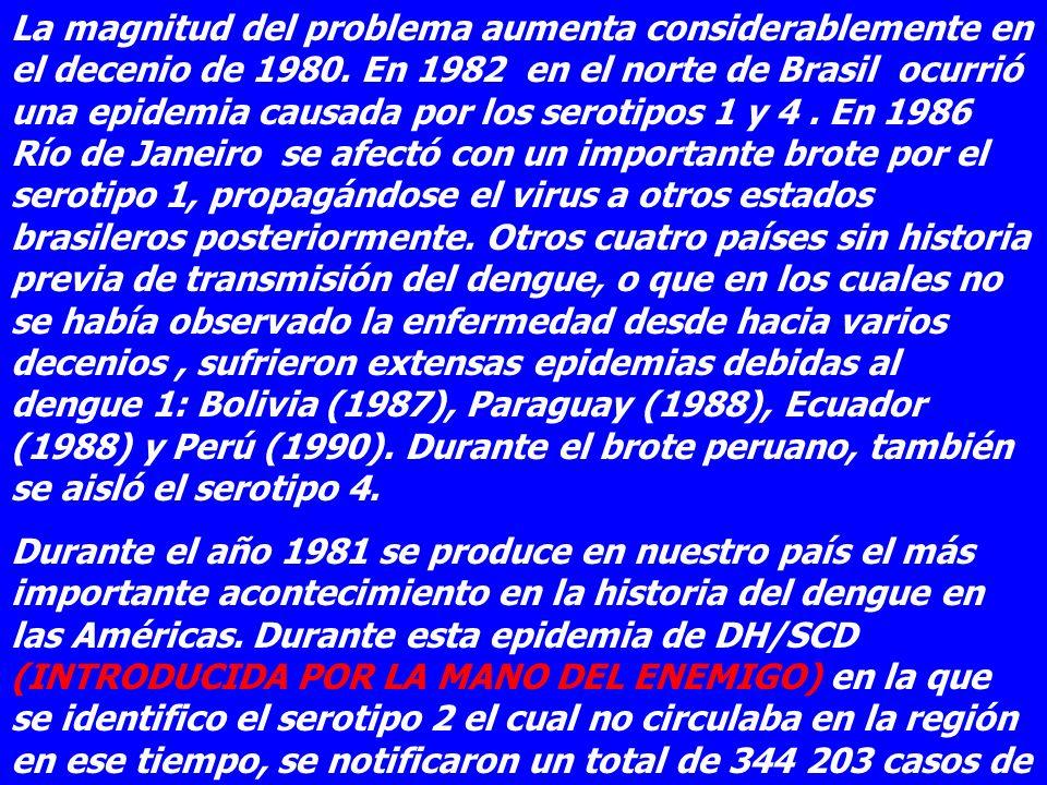 La magnitud del problema aumenta considerablemente en el decenio de 1980. En 1982 en el norte de Brasil ocurrió una epidemia causada por los serotipos