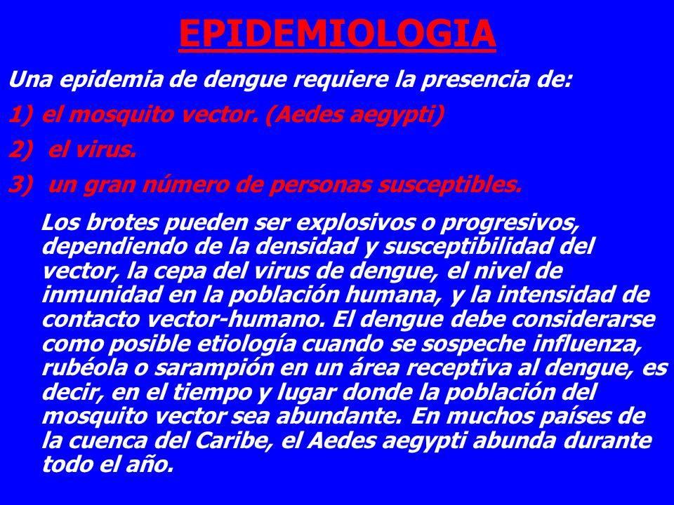 EPIDEMIOLOGIA Una epidemia de dengue requiere la presencia de: 1)el mosquito vector. (Aedes aegypti) 2) el virus. 3) un gran número de personas suscep