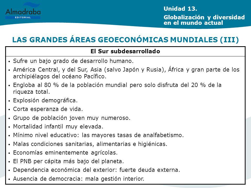 LAS GRANDES ÁREAS GEOECONÓMICAS MUNDIALES (III) El Sur subdesarrollado Sufre un bajo grado de desarrollo humano. América Central, y del Sur, Asia (sal