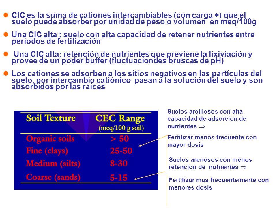 CIC es la suma de cationes intercambiables (con carga +) que el suelo puede absorber por unidad de peso o volumen en meq/100g Una CIC alta : suelo con