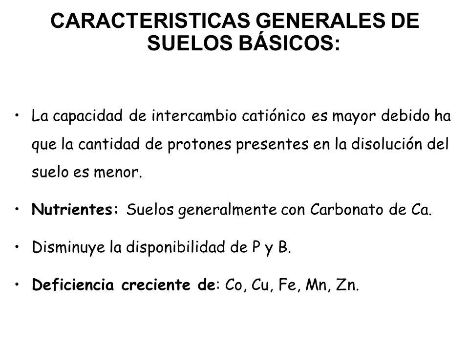 CARACTERISTICAS GENERALES DE SUELOS BÁSICOS: La capacidad de intercambio catiónico es mayor debido ha que la cantidad de protones presentes en la diso