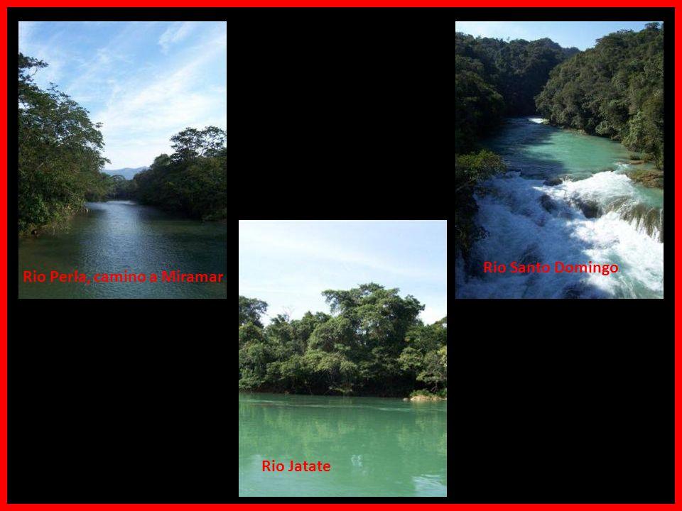 Palenque Photo © 2003 by Lalo_Legolas