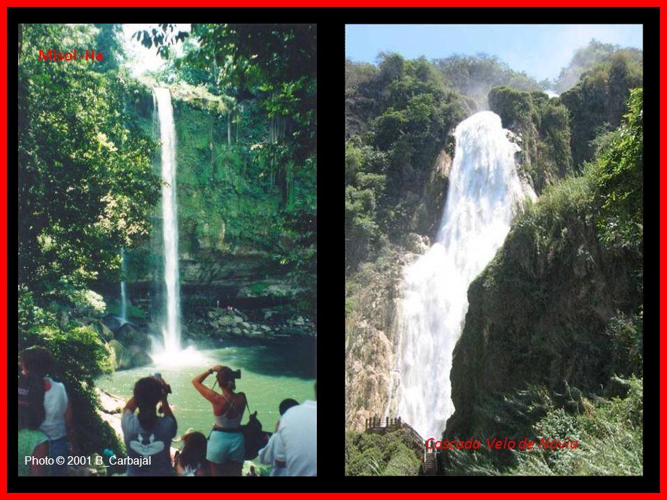 Rio Jatate Rio Perla, camino a Miramar Rio Santo Domingo