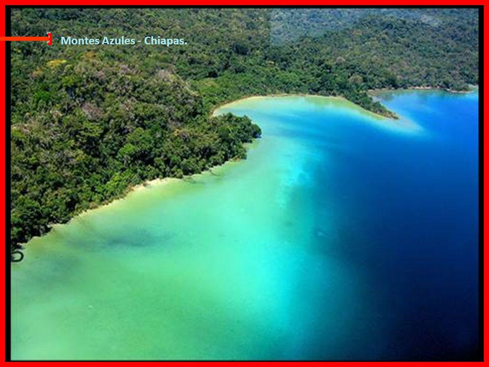 Laguna Miramar Una de las lagunas más hermosas de México, se encuentra en el corazón de la selva lacandona, ubicado dentro de los límites de la reserv