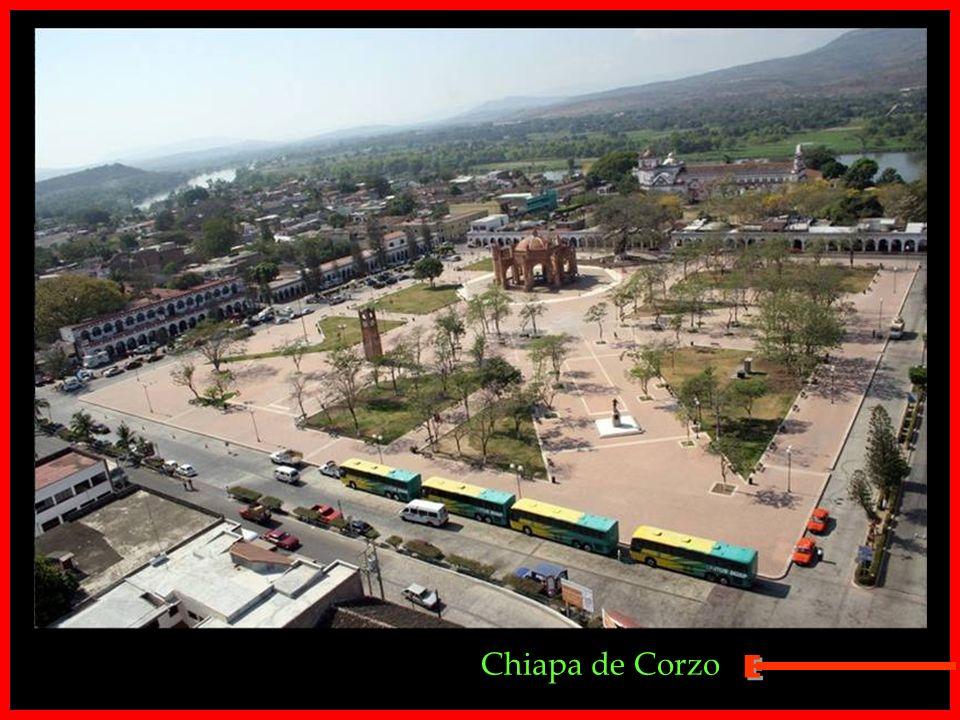 Montes Azules - Chiapas.