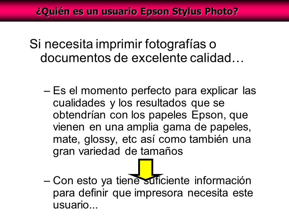 ¿Quién es un usuario Epson Stylus Photo.