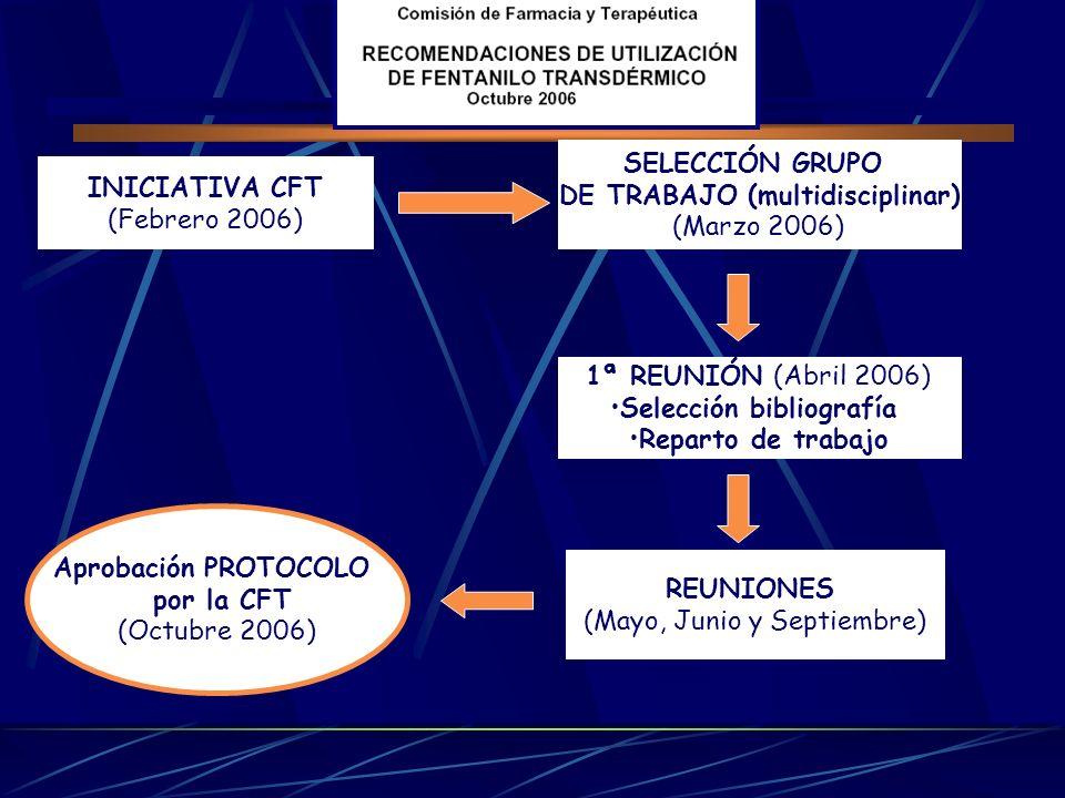 INICIATIVA CFT (Febrero 2006) SELECCIÓN GRUPO DE TRABAJO (multidisciplinar) (Marzo 2006) 1ª REUNIÓN (Abril 2006) Selección bibliografía Reparto de tra