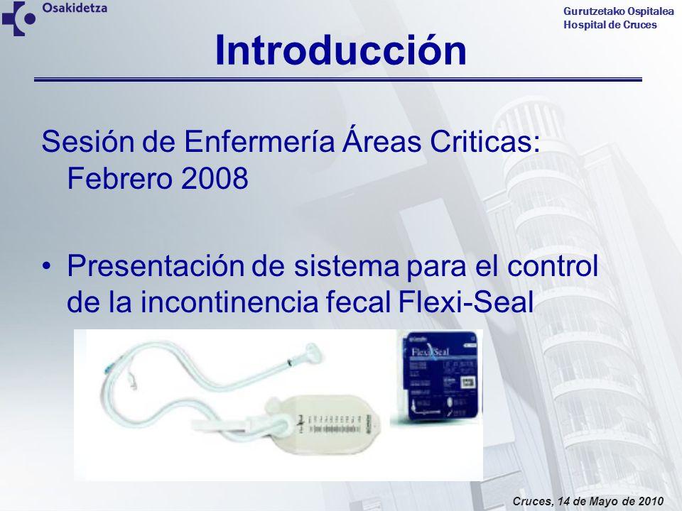 Gurutzetako Ospitalea Hospital de Cruces Cruces, 14 de Mayo de 2010 Introducción Sesión de Enfermería Áreas Criticas: Febrero 2008 Presentación de sis