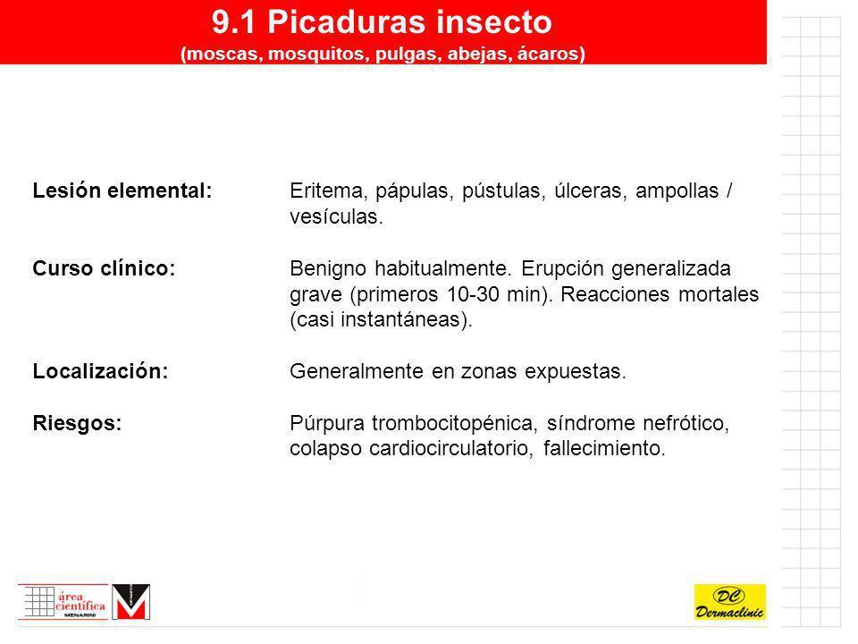 9.1 Picaduras insecto (moscas, mosquitos, pulgas, abejas, ácaros) Lesión elemental:Eritema, pápulas, pústulas, úlceras, ampollas / vesículas. Curso cl