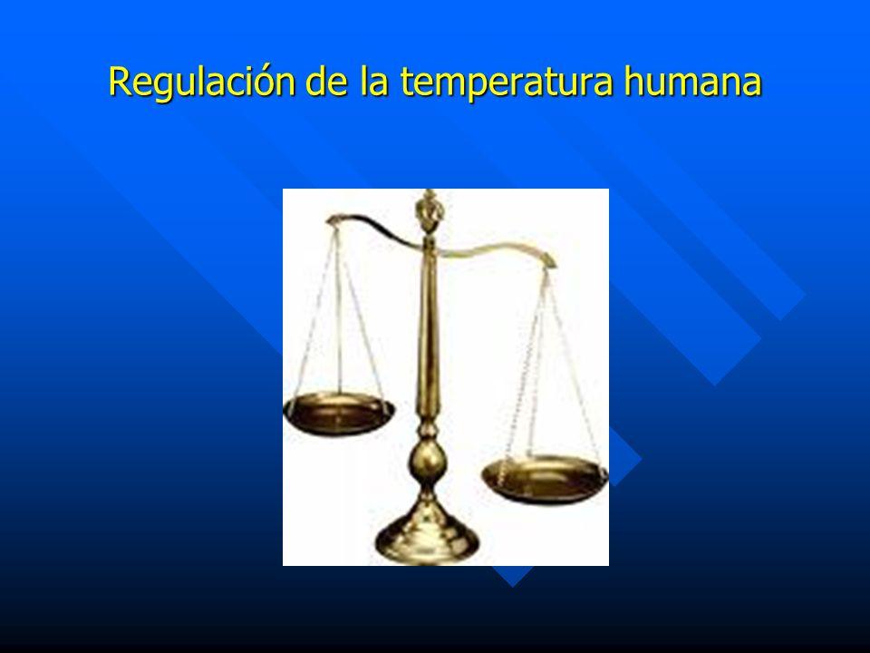 Regulación de la temperatura humana