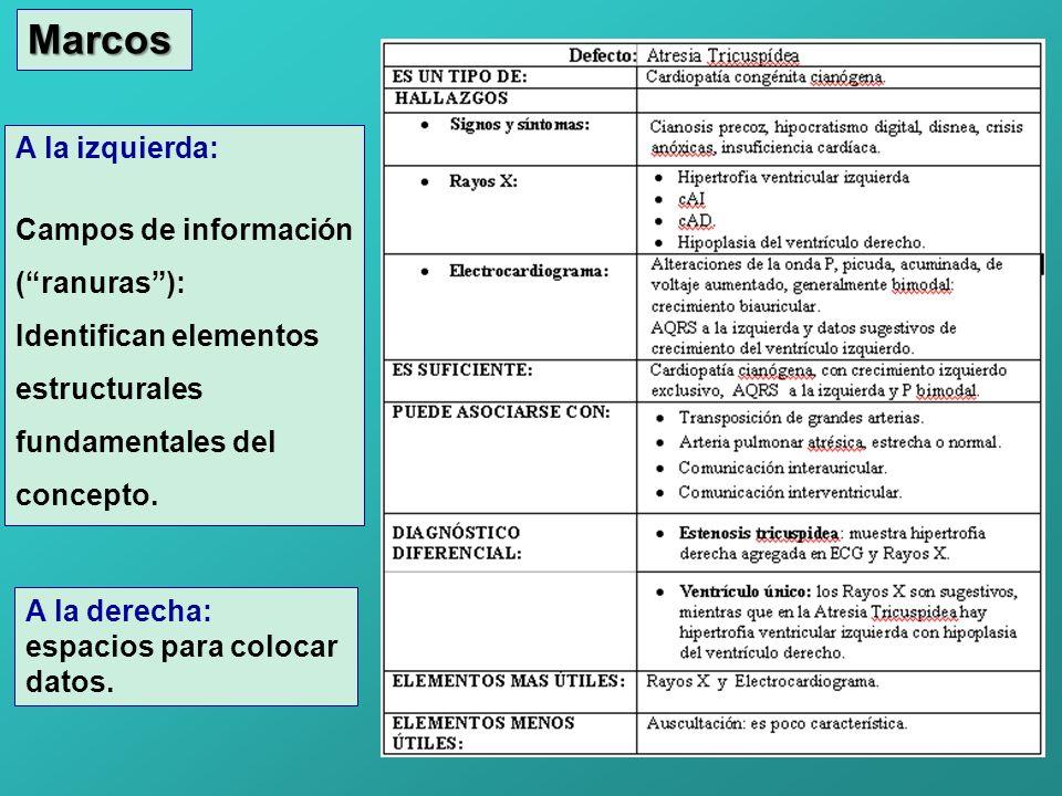 Marcos A la izquierda: Campos de información (ranuras): Identifican elementos estructurales fundamentales del concepto. A la derecha: espacios para co