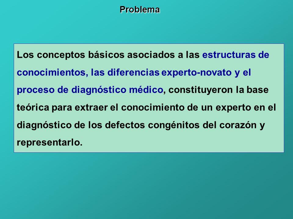 Los conceptos básicos asociados a las estructuras de conocimientos, las diferencias experto-novato y el proceso de diagnóstico médico, constituyeron l