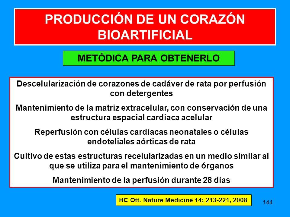 144 PRODUCCIÓN DE UN CORAZÓN BIOARTIFICIAL METÓDICA PARA OBTENERLO Descelularización de corazones de cadáver de rata por perfusión con detergentes Mantenimiento de la matriz extracelular, con conservación de una estructura espacial cardiaca acelular Reperfusión con células cardiacas neonatales o células endoteliales aórticas de rata Cultivo de estas estructuras recelularizadas en un medio similar al que se utiliza para el mantenimiento de órganos Mantenimiento de la perfusión durante 28 días HC Ott.