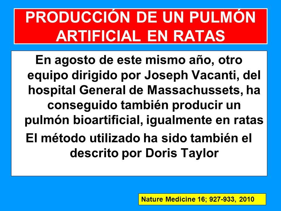 En agosto de este mismo año, otro equipo dirigido por Joseph Vacanti, del hospital General de Massachussets, ha conseguido también producir un pulmón bioartificial, igualmente en ratas El método utilizado ha sido también el descrito por Doris Taylor 147 PRODUCCIÓN DE UN PULMÓN ARTIFICIAL EN RATAS Nature Medicine 16; 927-933, 2010