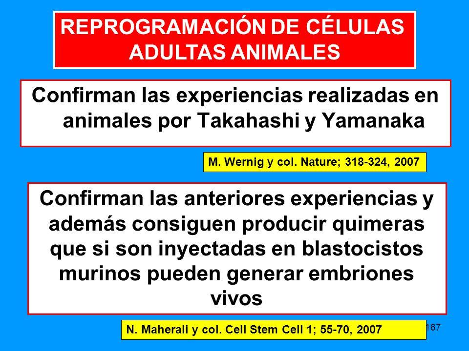 167 Confirman las experiencias realizadas en animales por Takahashi y Yamanaka M.