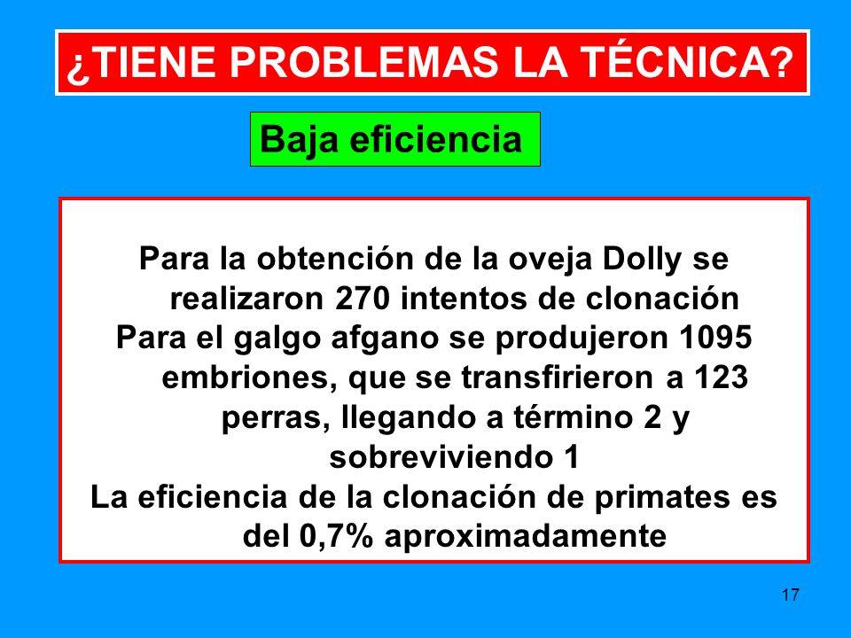 17 ¿TIENE PROBLEMAS LA TÉCNICA.