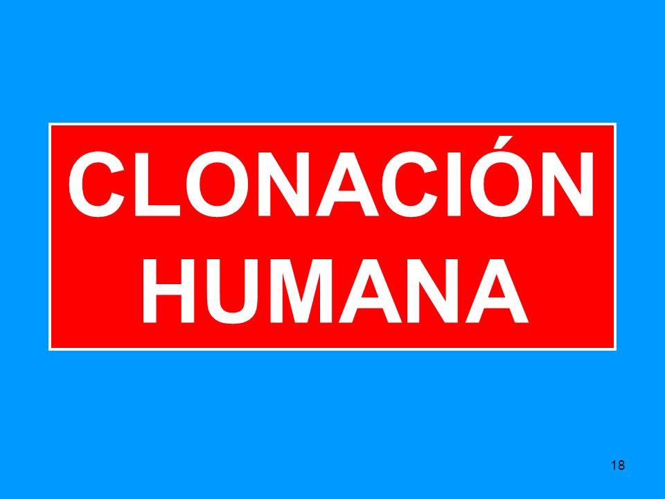 18 CLONACIÓN HUMANA