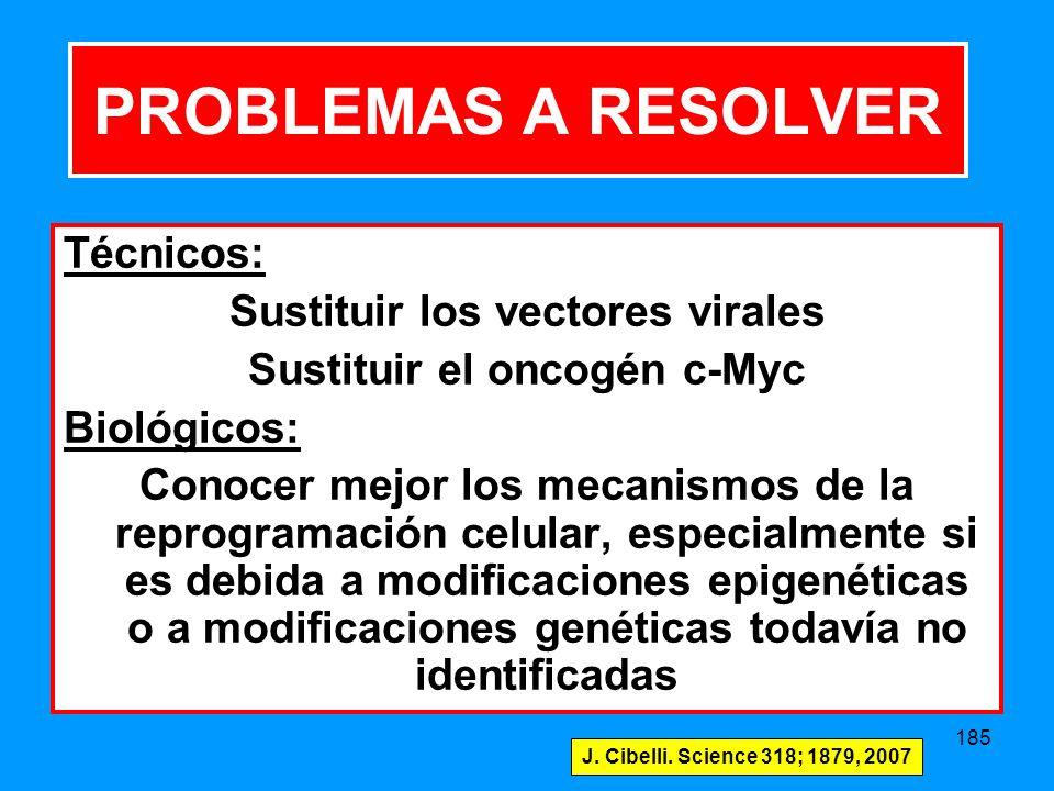 185 Técnicos: Sustituir los vectores virales Sustituir el oncogén c-Myc Biológicos: Conocer mejor los mecanismos de la reprogramación celular, especialmente si es debida a modificaciones epigenéticas o a modificaciones genéticas todavía no identificadas PROBLEMAS A RESOLVER J.