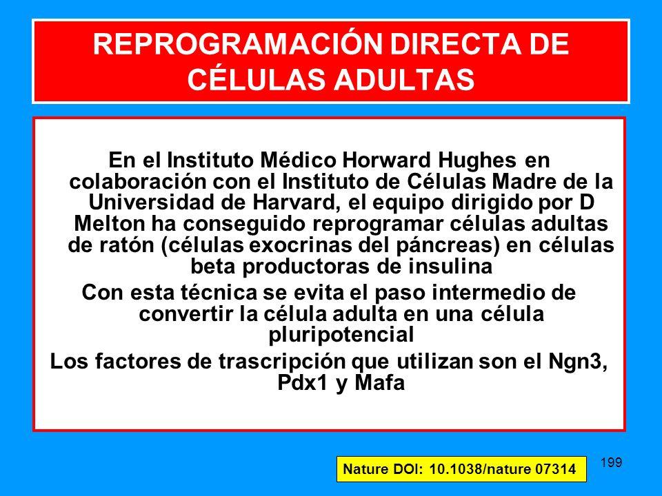 199 En el Instituto Médico Horward Hughes en colaboración con el Instituto de Células Madre de la Universidad de Harvard, el equipo dirigido por D Melton ha conseguido reprogramar células adultas de ratón (células exocrinas del páncreas) en células beta productoras de insulina Con esta técnica se evita el paso intermedio de convertir la célula adulta en una célula pluripotencial Los factores de trascripción que utilizan son el Ngn3, Pdx1 y Mafa REPROGRAMACIÓN DIRECTA DE CÉLULAS ADULTAS Nature DOI: 10.1038/nature 07314