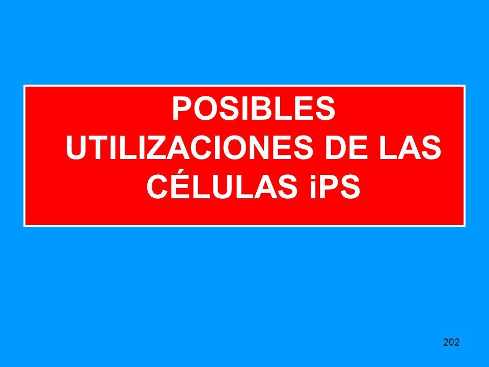 202 POSIBLES UTILIZACIONES DE LAS CÉLULAS iPS