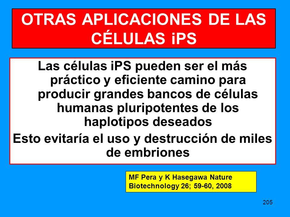 205 OTRAS APLICACIONES DE LAS CÉLULAS iPS Las células iPS pueden ser el más práctico y eficiente camino para producir grandes bancos de células humanas pluripotentes de los haplotipos deseados Esto evitaría el uso y destrucción de miles de embriones MF Pera y K Hasegawa Nature Biotechnology 26; 59-60, 2008