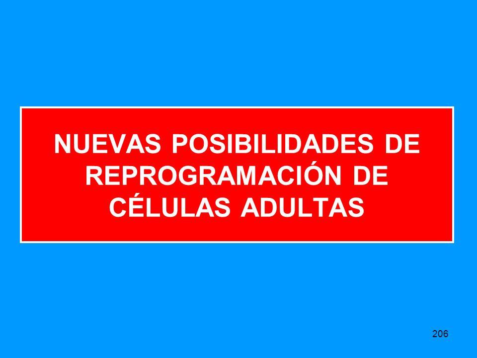 206 NUEVAS POSIBILIDADES DE REPROGRAMACIÓN DE CÉLULAS ADULTAS