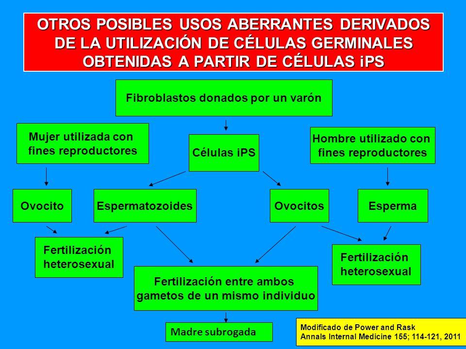 OTROS POSIBLES USOS ABERRANTES DERIVADOS DE LA UTILIZACIÓN DE CÉLULAS GERMINALES OBTENIDAS A PARTIR DE CÉLULAS iPS Fibroblastos donados por un varón Mujer utilizada con fines reproductores Células iPS Hombre utilizado con fines reproductores OvocitoEspermatozoidesOvocitosEsperma Fertilización heterosexual Fertilización heterosexual Fertilización entre ambos gametos de un mismo individuo Modificado de Power and Rask Annals Internal Medicine 155; 114-121, 2011 Madre subrogada
