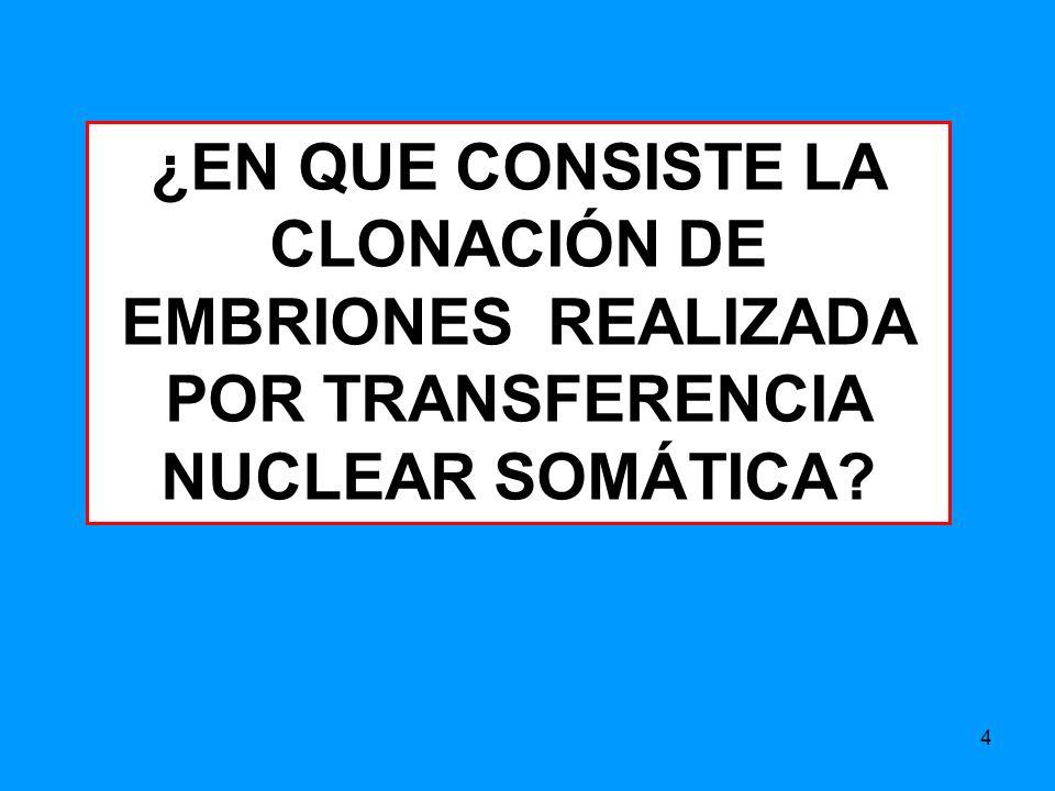 4 ¿EN QUE CONSISTE LA CLONACIÓN DE EMBRIONES REALIZADA POR TRANSFERENCIA NUCLEAR SOMÁTICA?