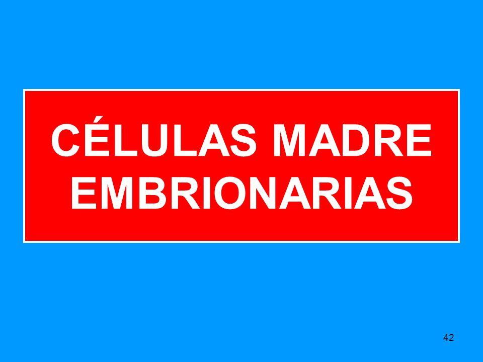 42 CÉLULAS MADRE EMBRIONARIAS