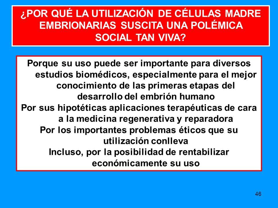 46 ¿POR QUÉ LA UTILIZACIÓN DE CÉLULAS MADRE EMBRIONARIAS SUSCITA UNA POLÉMICA SOCIAL TAN VIVA.