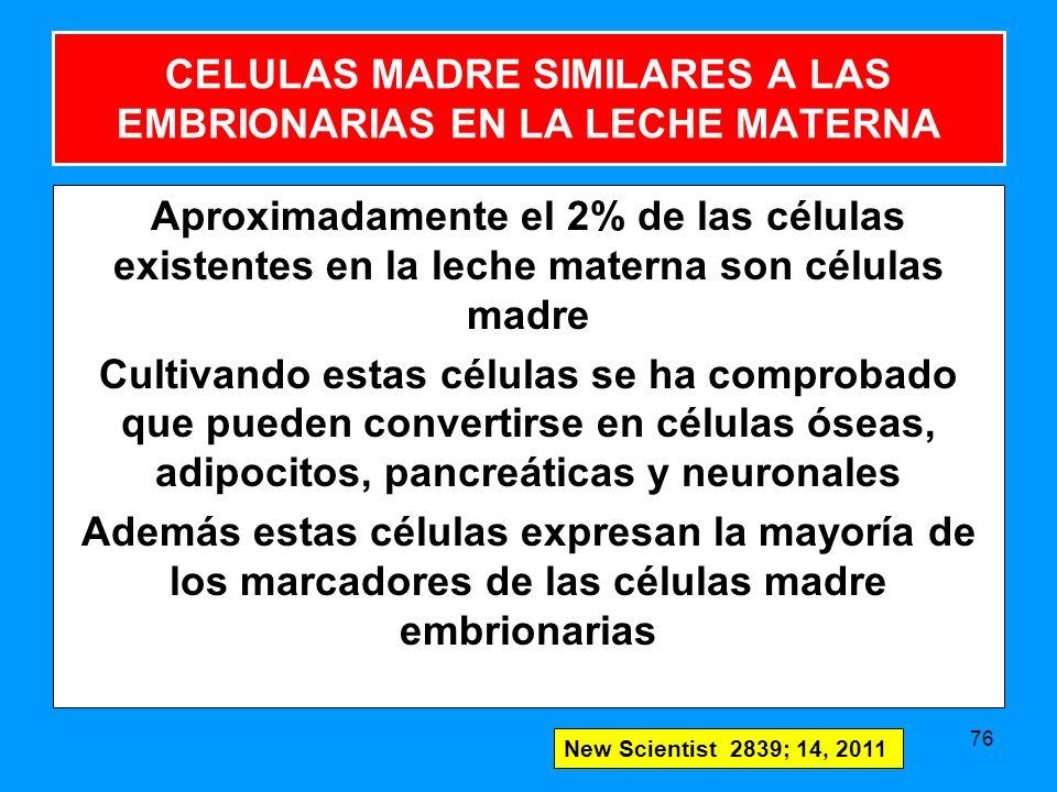 CELULAS MADRE SIMILARES A LAS EMBRIONARIAS EN LA LECHE MATERNA Aproximadamente el 2% de las células existentes en la leche materna son células madre Cultivando estas células se ha comprobado que pueden convertirse en células óseas, adipocitos, pancreáticas y neuronales Además estas células expresan la mayoría de los marcadores de las células madre embrionarias 76 New Scientist 2839; 14, 2011