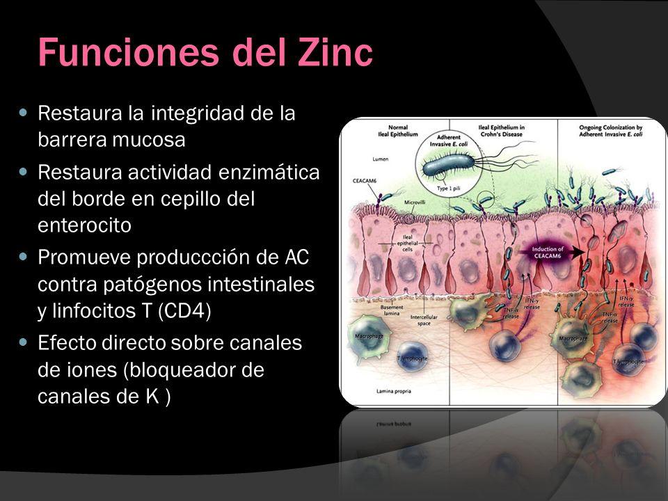 Funciones del Zinc Restaura la integridad de la barrera mucosa Restaura actividad enzimática del borde en cepillo del enterocito Promueve produccción