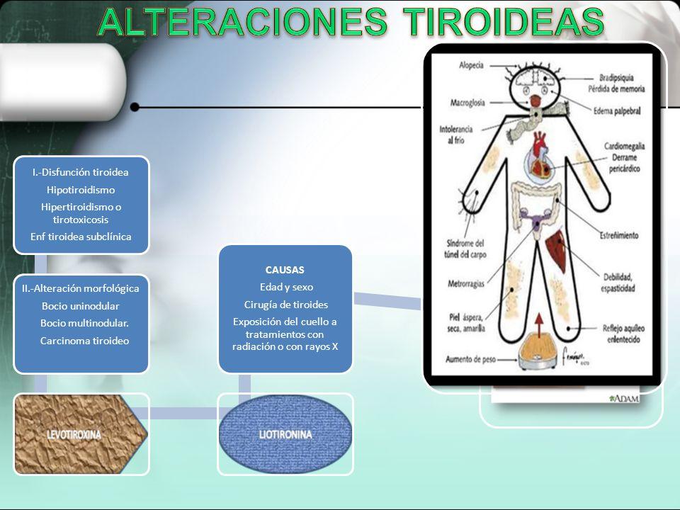 I.-Disfunción tiroidea Hipotiroidismo Hipertiroidismo o tirotoxicosis Enf tiroidea subclínica II.-Alteración morfológica Bocio uninodular Bocio multin
