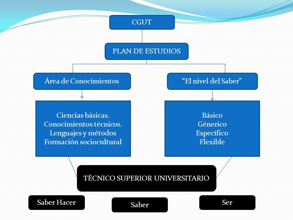 CGUT PLAN DE ESTUDIOS Área de ConocimientosEl nivel del Saber Ciencias básicas. Conocimientos técnicos. Lenguajes y métodos Formación sociocultural Bá