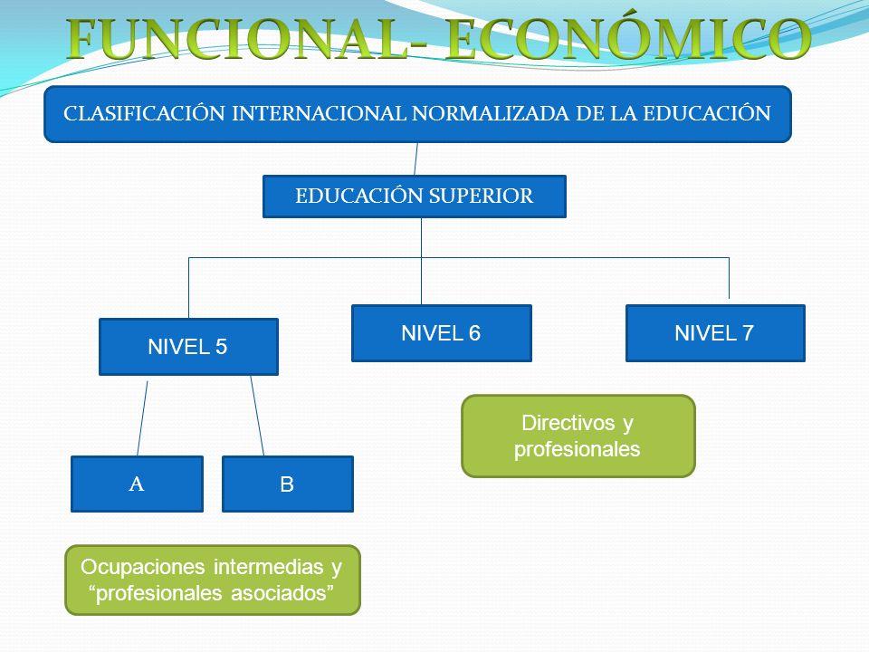 CLASIFICACIÓN INTERNACIONAL NORMALIZADA DE LA EDUCACIÓN EDUCACIÓN SUPERIOR NIVEL 6NIVEL 7 A B NIVEL 5 Ocupaciones intermedias y profesionales asociados Directivos y profesionales