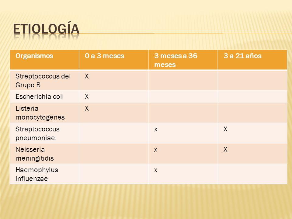 Meningitis aguda Meningitis «sub-aguda» Meningo-encefalitis.