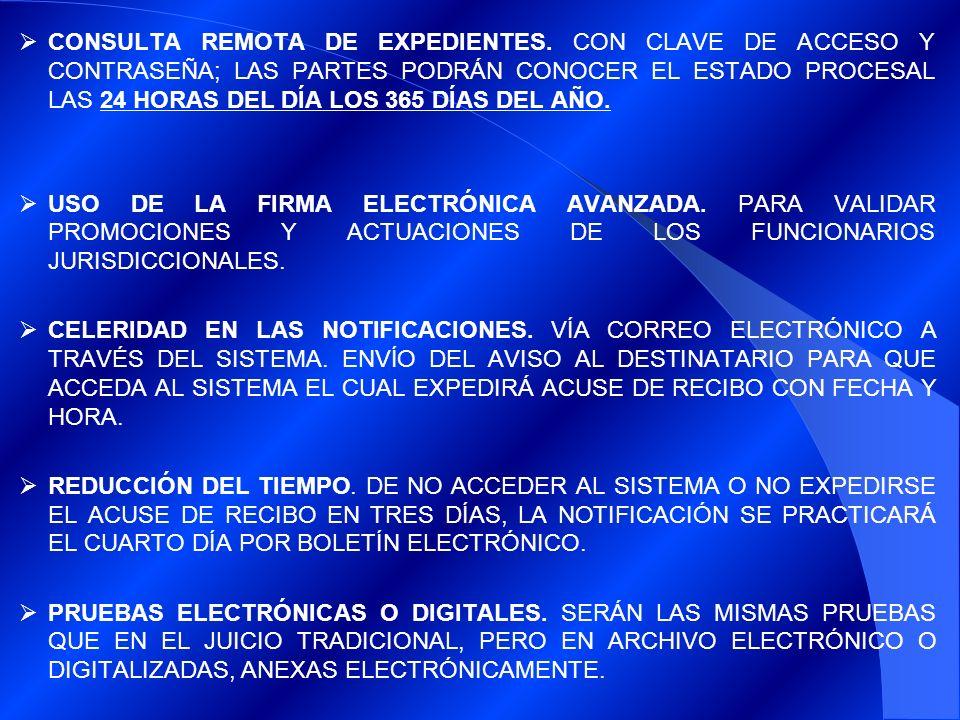 CONSULTA REMOTA DE EXPEDIENTES.