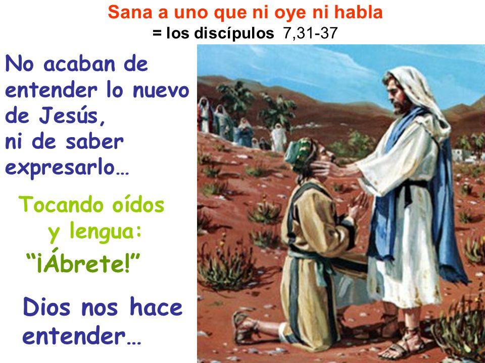 No acaban de entender lo nuevo de Jesús, ni de saber expresarlo… Sana a uno que ni oye ni habla = los discípulos 7,31-37 ¡Ábrete! Tocando oídos y leng
