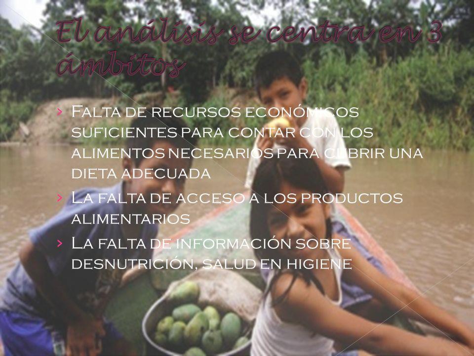 F alta de recursos económicos suficientes para contar con los alimentos necesarios para cubrir una dieta adecuada L a falta de acceso a los productos alimentarios L a falta de información sobre desnutrición, salud en higiene
