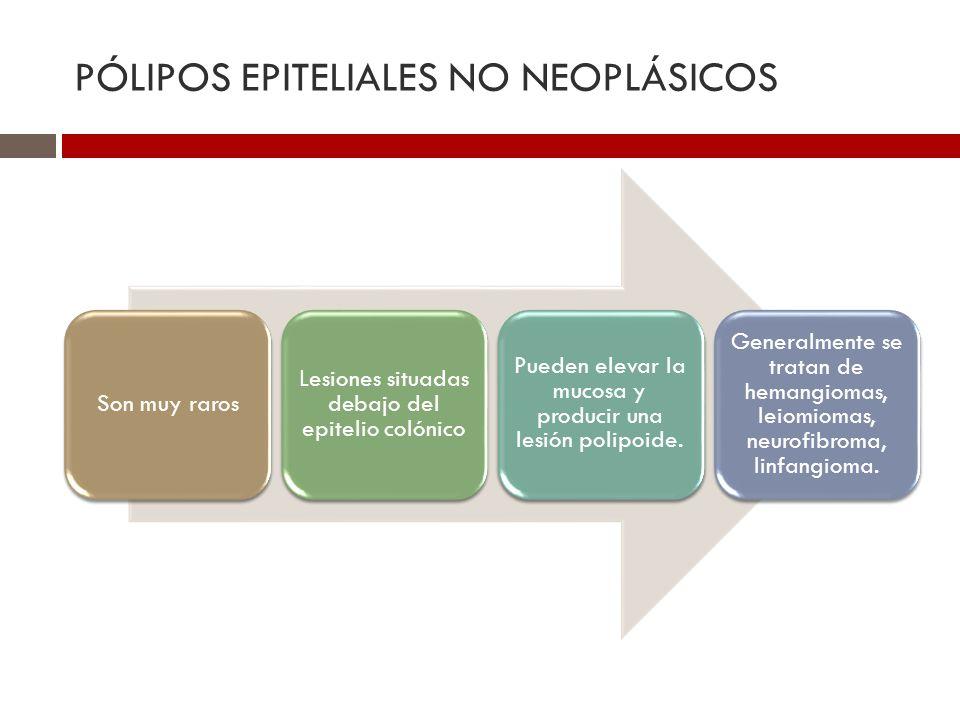 PÓLIPOS EPITELIALES NO NEOPLÁSICOS Son muy raros Lesiones situadas debajo del epitelio colónico Pueden elevar la mucosa y producir una lesión polipoid